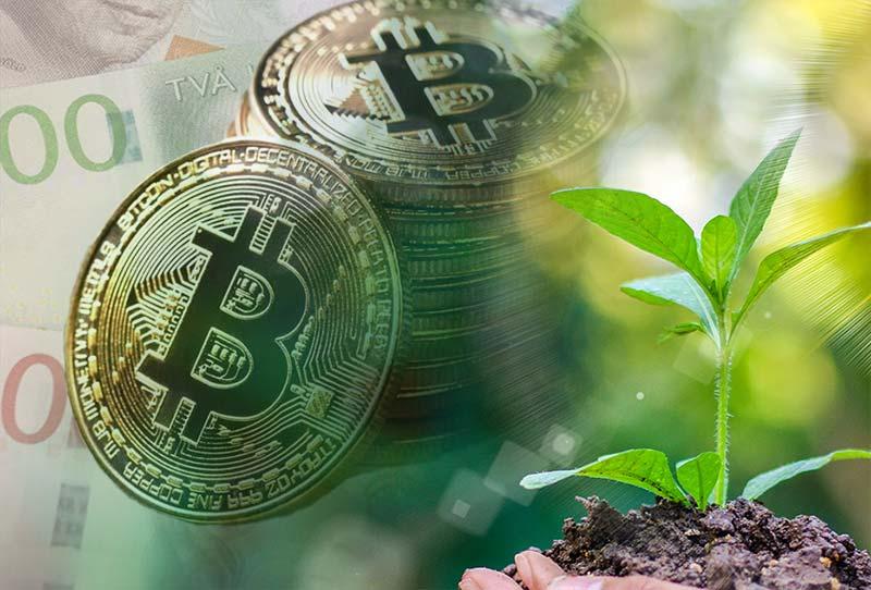 bitcoin och klimatet